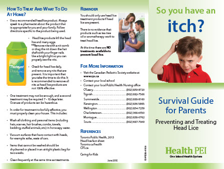 Preventing and treating head lice brochure